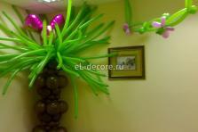 Пальма из воздушных шаров