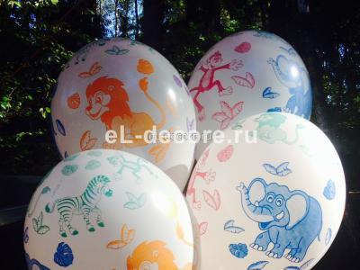 """Воздушные шары """"Африка"""" (полет шара от 3 дней и более)"""