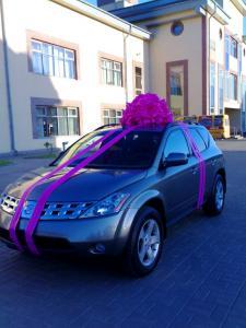Розовый бант на автомобиль